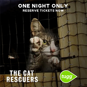 Cat Rescuers Movie Frederick MD August 29 2019